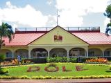dole plantation tour